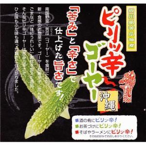 ピリッ辛ゴーヤー 110g サンフルーツ 4個までメール便可|y-sansei-shop|02
