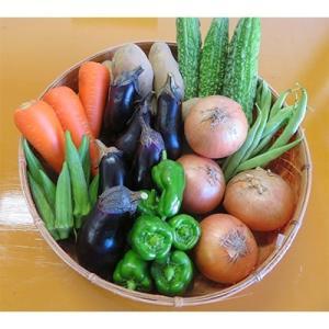 高松市 ふるさと納税 高松産野菜セット y-sf