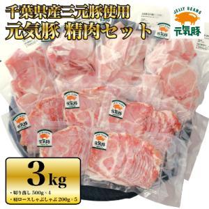 多古町 ふるさと納税 【農場直送】千葉県産三元豚 元気豚 精肉セット 3kg