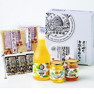 津山市 ふるさと納税 よくばり自然食品セット(20395)|y-sf