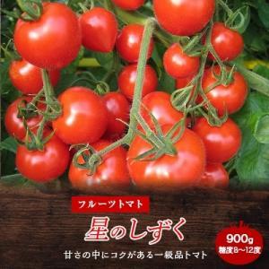 阿波市 ふるさと納税 フルーツトマト「星のしずく」 900g