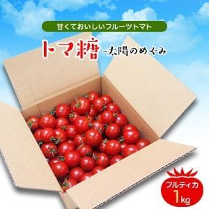 南アルプス市 ふるさと納税 フルーツトマト「太陽のめぐみ」1kg