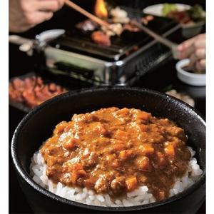 飯田市 ふるさと納税 焼肉の街 南信州・飯田 焼肉の〆のキーマカレー15食