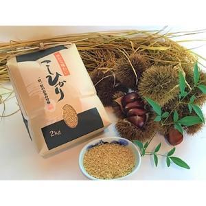 高島市 ふるさと納税 契約栽培 近江米【玄米】 コシヒカリ 2kg× 1袋