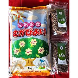 基山町 ふるさと納税 令和元年産さがびより(精米)5kg&もち麦(500g)2袋|y-sf