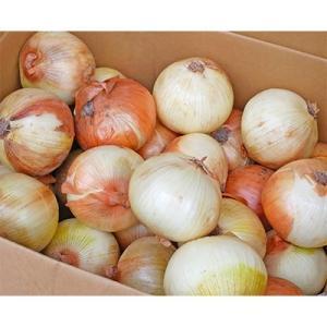 上郡町 ふるさと納税 【令和3年産】大型農家が作る玉ねぎ 3Lサイズ以上 約18kg