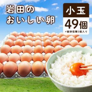 榛東村 ふるさと納税 岩田のおいしい卵 小玉49個+破卵保障5個入り