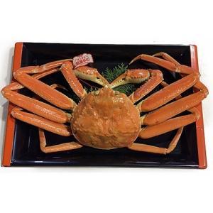 北栄町 ふるさと納税 鳥取県産タグ付きボイル松葉ガニ特大1枚(900g〜1kg)