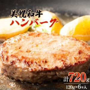 美幌町 ふるさと納税 美幌和牛ハンバーグ(120g×6ヶ入)