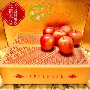 藤崎町 ふるさと納税 ふじ発祥地産 葉とらずサンふじ ご家庭用 約5kg 葉取らずりんご|y-sf