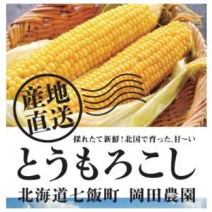 七飯町 ふるさと納税 北海道七飯町産とうもろこし「ゴールドラッシュ」 20本セット y-sf