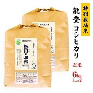 七尾市 ふるさと納税 【令和元年産】能登のコシヒカリ 飯川のお米 6kg(玄米3kg×2袋)