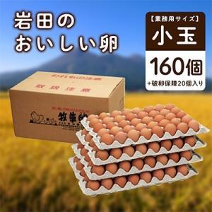 榛東村 ふるさと納税 【業務用サイズ】岩田のおいしい卵小玉160個+破卵保障20個入り