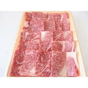 池田町 ふるさと納税 A5等級飛騨牛焼き肉セット1kg(ロース又は肩ロース500g+モモ又はカタ500g)の画像