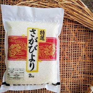 伊万里市 ふるさと納税 2020年3月発送 お米マイスターセレクト さがびより(無洗米)2kg×3袋(真空パック)特A評価