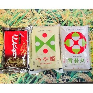 酒田市 ふるさと納税 令和の時代も米処の庄内米 食べ比べセット 精米「コシヒカリ・つや姫・雪若丸」各種2kg×1袋