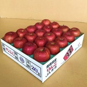 青森市 ふるさと納税 JA青森 青森県産りんご「サンふじ」約5kg_A1-1|y-sf