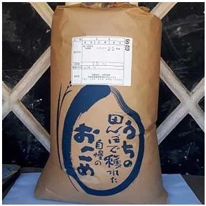 美浦村 ふるさと納税 【令和元年産】美浦の逸品「コシヒカリ」一等米玄米10kg