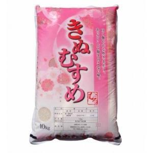 米子市 ふるさと納税 新米 きぬむすめ10kg (精白米)