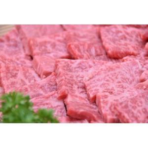美濃加茂市 ふるさと納税 飛騨牛A5等級 焼肉用400g(モモ肉)