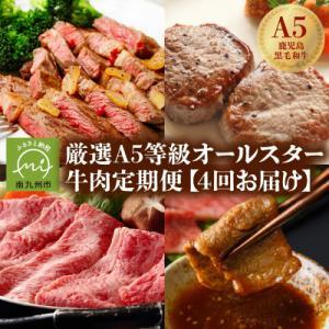 南九州市 ふるさと納税 厳選A5等級オールスター牛肉定期便の画像