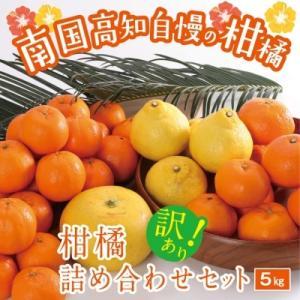 室戸市 ふるさと納税 【訳あり】柑橘詰め合わせセット(約5kg)