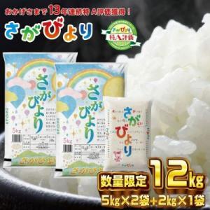 神埼市 ふるさと納税 10年連続最高評価特A受賞米!令和元年産さがびより10kg (H015107)