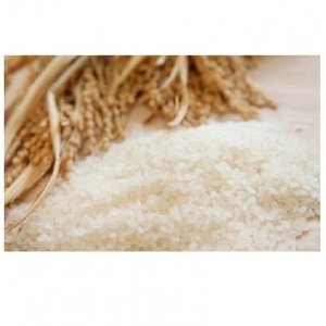 境町 ふるさと納税 <配送月おまかせ>【令和元年産】茨城県のお米4種食べくらべ20kgセット