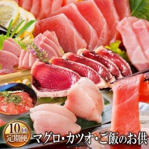 枕崎市 ふるさと納税 定期便(10ケ月)マグロ・カツオ&ご飯のお供|y-sf