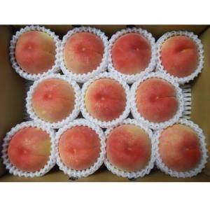 上山市 ふるさと納税 山形の旬の桃(品種おまかせ)3kg 0017-2006|y-sf