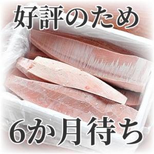 三浦市 ふるさと納税 これを選べば間違いなし!とにかくたくさん食べたい人に!三崎の天然鮪3kg|y-sf