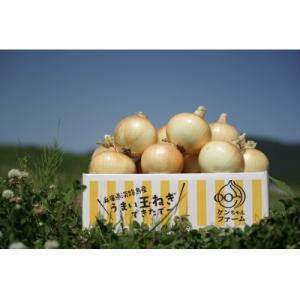 南あわじ市 ふるさと納税 \うまい玉ねぎできたでー/ ケンちゃんファームの特別栽培玉ねぎ3kg 〜ひ...