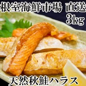 ふるさと納税 根室市 甘汐天然秋鮭ハラス3kg(500g×6P) A-11131