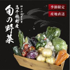 高千穂町 ふるさと納税 季節の里山野菜