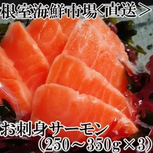 ふるさと納税 根室市 根室海鮮市場<直送>お刺身サーモン250〜350g×3P A-28130