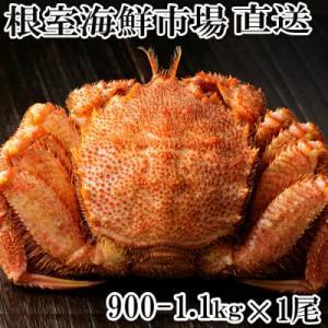ふるさと納税 根室市 根室海鮮市場<直送>ボイル毛がに900g〜1.1kg×1尾 B-28016