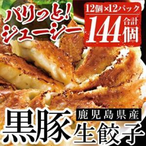 いちき串木野市 ふるさと納税 鹿児島黒豚生餃子 合計144個(12個×12P) y-sf
