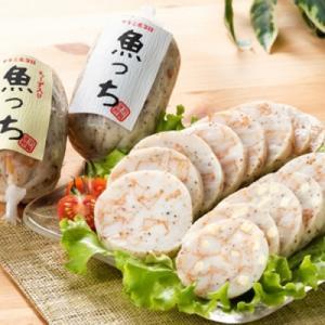 ふるさと納税 いちき串木野市 ふるさと納税限定!サラミ風蒲鉾魚っちセット