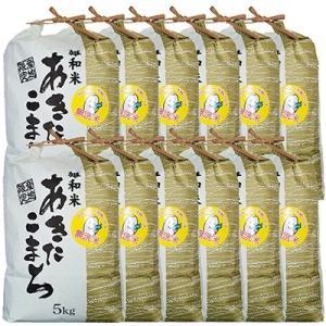秋田市 ふるさと納税 2020年3月発送開始『定期便』秋田市雄和産あきたこまち清流米(無洗米)5kg全12回
