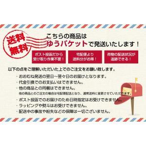Nフレーム 2010 2L判/KG判 ゴールド/ブラック 万丈 ゆうパケット便 送料無料|y-sharaku|06