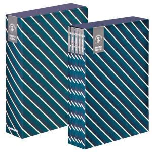 5冊ソフトボックス ポケットアルバム L3段270枚収納 シンプル柄 ストライプ ブルー 5PL-270-33-B ナカバヤシ|y-sharaku
