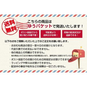 PHOTOぶくろ L・ハガキサイズ ドット 10枚入 PEV-KG-104 ナカバヤシ 受発注商品 ゆうパケット便 送料無料|y-sharaku|03