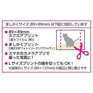 チェキスクエアアルバム Pポケットアルバム NP 89 ましかく(89mm) サイズ 20枚収納 キャンディ2 APNP-89-CA2 ハクバ 受発注商品|y-sharaku|05