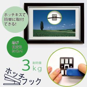 石こうボード用フック ホッチフック 3kg用の商品画像|ナビ
