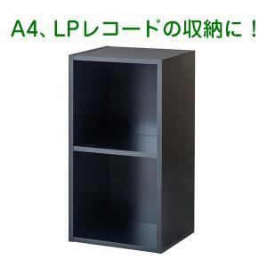 バイナルボックス レコードラック 2段 黒 受発注品 送料無料 y-sharaku