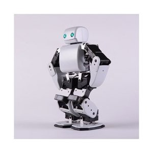 DMM.COM DMM.make ROBOTS [Plen D 運動神経バツグンのロボット] RBHM0000000345731927