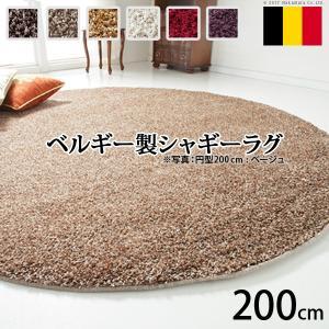 ベルギー製 ウィルトン織り シャギーラグ リエージュ 円形 径200cm|y-syo-ei