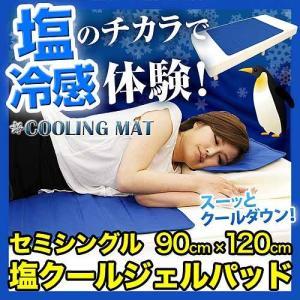塩クールジェルパッド セミシングル 90cm×120cm|y-syo-ei
