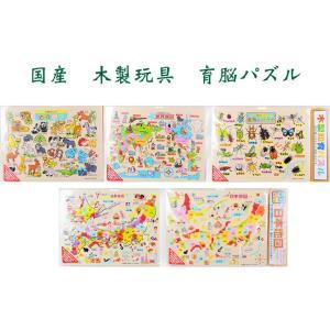 育脳パズル 国産 日本地図 世界地図 昆虫 動物 木製パズル 知育 教育 楽しい 安心 安全 楽天店より15%OFF|y-takei