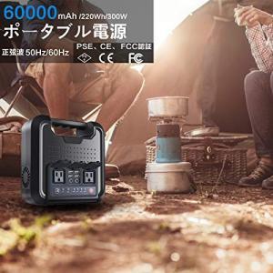 【入力 3WAY】本体容量:60000mAh 3.7V 220Wh;DCアダプター:15V 2.5A...